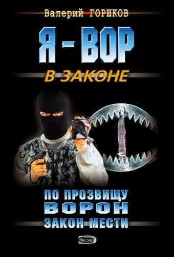 Валерий Горшков. По прозвищу ворон 1. Закон мести