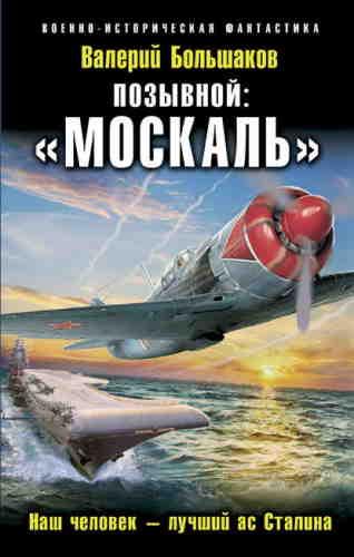 Валерий Большаков. Позывной: «Москаль». Наш человек – лучший ас Сталина