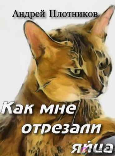 Андрей Плотников. Как мне отрезали яйца