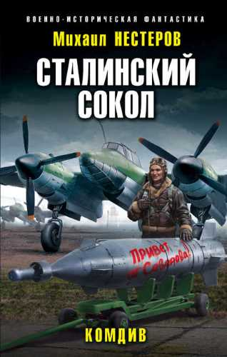 Михаил Нестеров. Сталинский сокол 3. Комдив