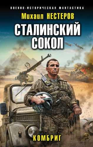 Михаил Нестеров. Сталинский сокол 2. Комбриг