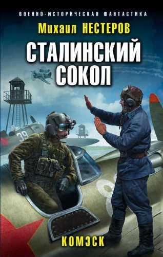 Михаил Нестеров. Сталинский сокол 1. Комэск