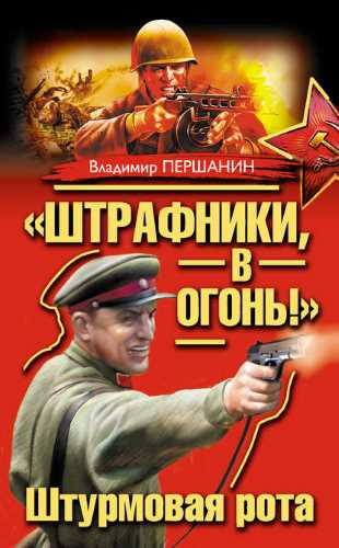 Владимир Першанин. Штрафники, в огонь!