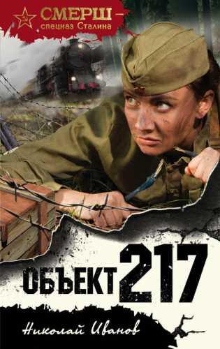 Николай Иванов. Объект 217